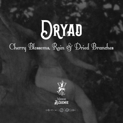 Dryad // Body Butter