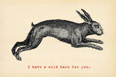 Postcard - Wild Hare - Adored A Lovely Boutique