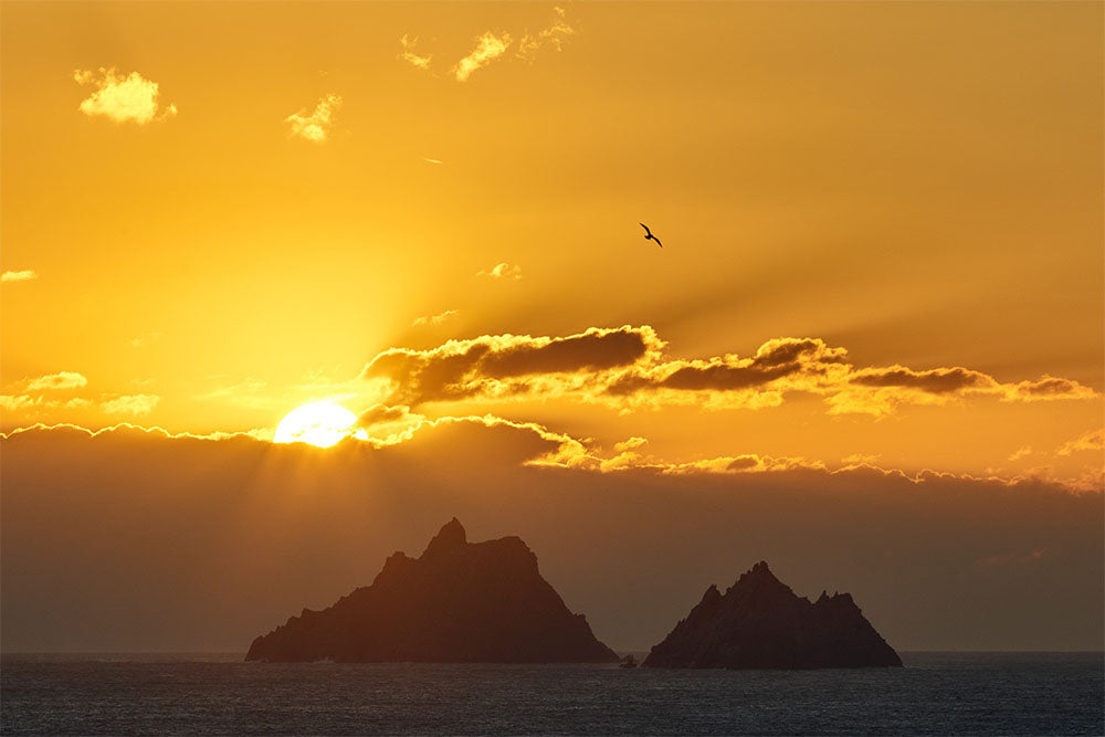 Skelligs Sunset by Peter Cox