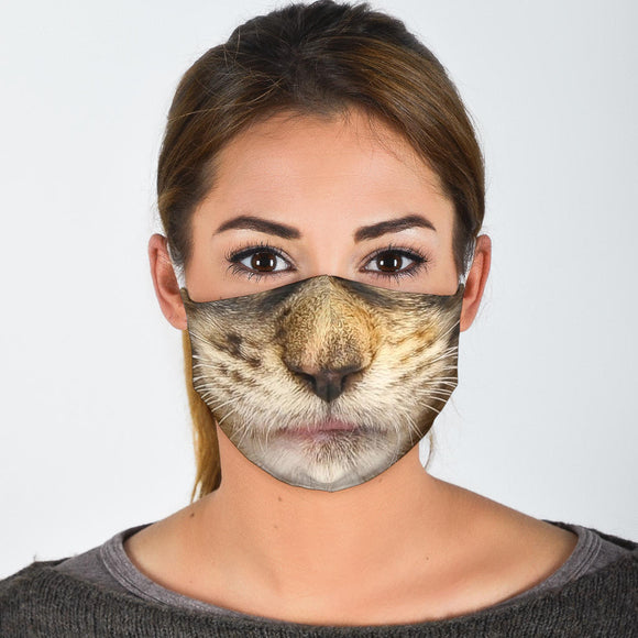 Brown Maine Coon Cat Face Mask