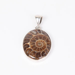 Ammonite Pendant with Sterling Silver Round