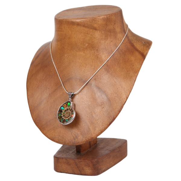 Ammonite Pendant with Ammolite and Sterling Silver