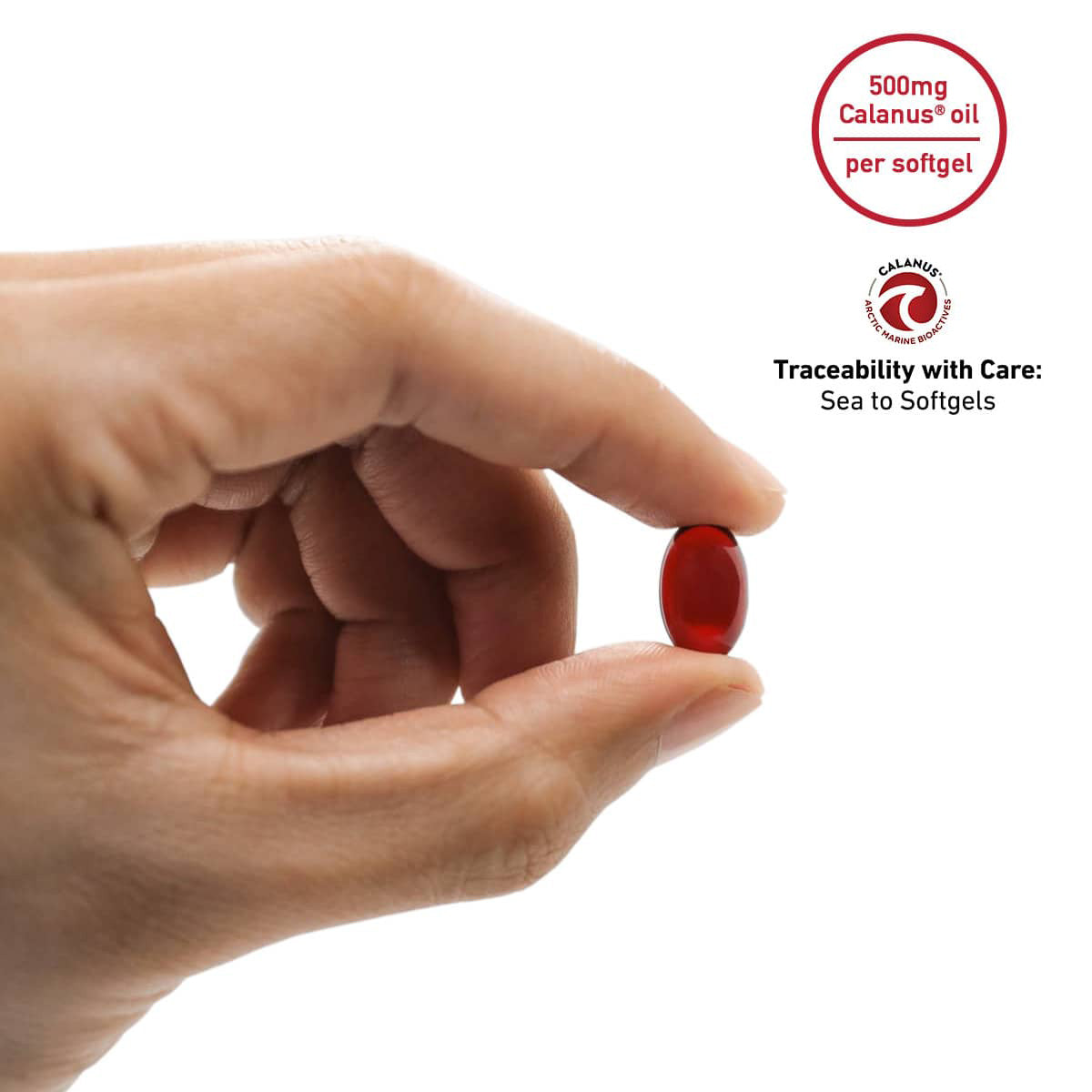 3 Month Subscription -- Ruby of the Sea® Oil 500mg - 180 softgels.  FREE SHIPPING!