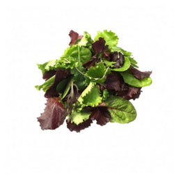 Lettuce Baby Mixed Salad 250g