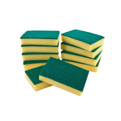 Sponge Backed Scourers x 10