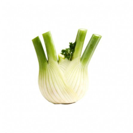Fennel Loose