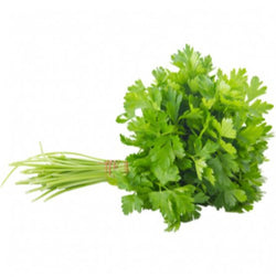 Parsley Continental 100g