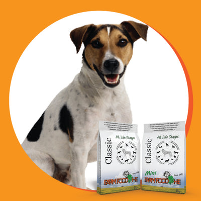 Happy dog with Farm Food Cold Pressed Dog Food
