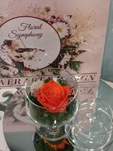 "Load image into Gallery viewer, ""Sweet Rose"" - Floral Symphony.IE"