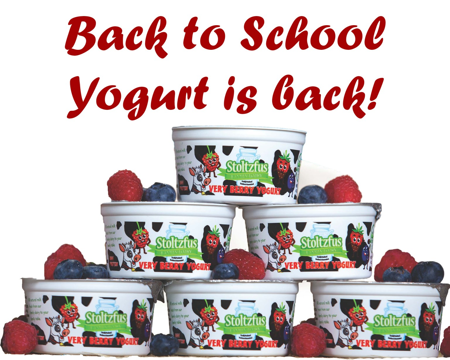 Back to School Yogurt is Available Again!