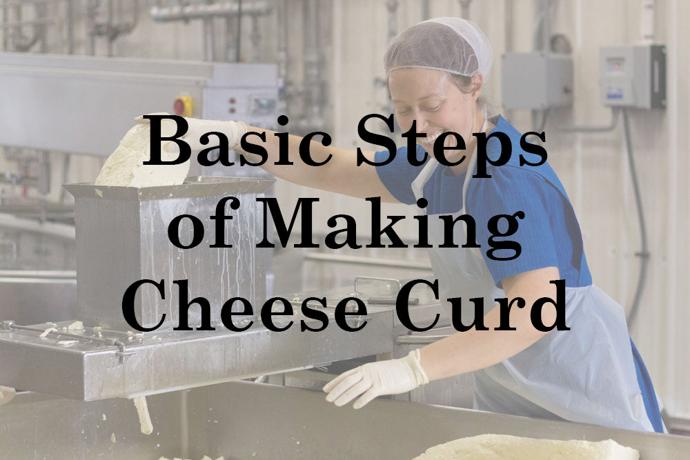 Basic Steps of Making Cheese Curd