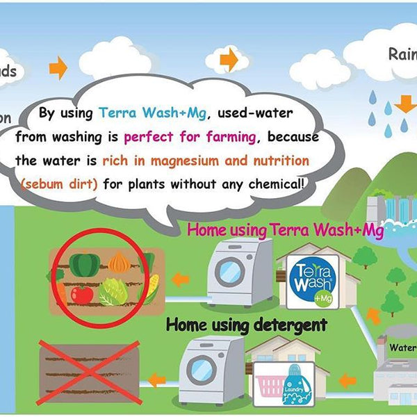 Used water from laundry can be used for gardening?!