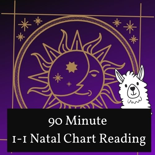 90 Minute Natal Chart Reading and Consulting Session