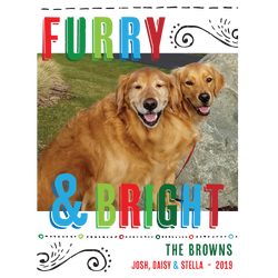 Furry & Bright Holiday Photo Card