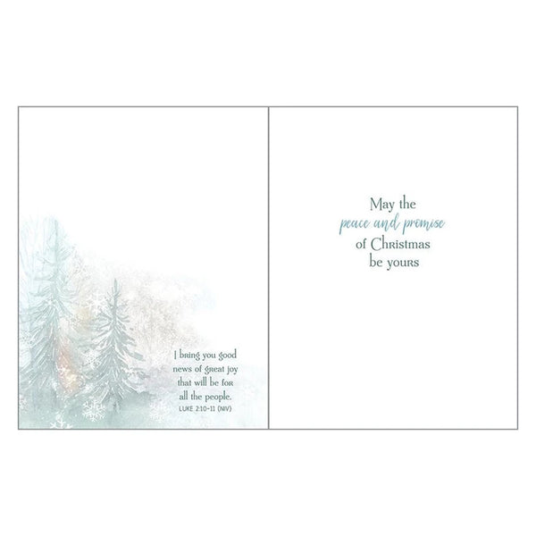 Winter Pines Boxed Christmas Cards  (box of 10)