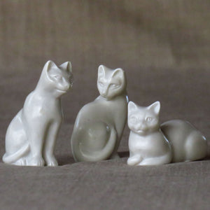 Set of Small Cats