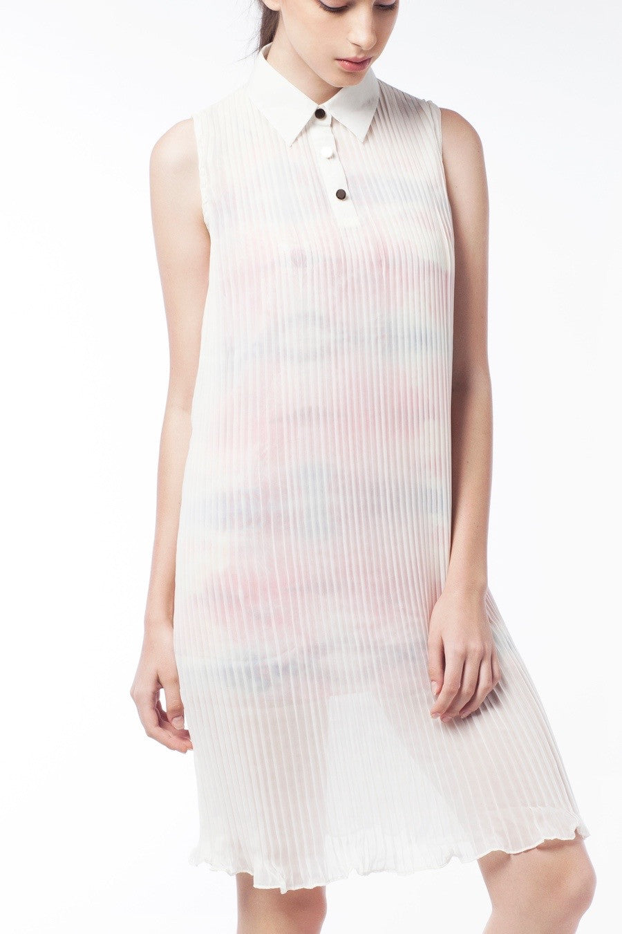 2 In 1 Mysterious Sheer Pleat Dress - GlanceZ   - 4