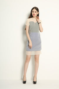 Organza Double Layered Contrast Dress - GlanceZ   - 1