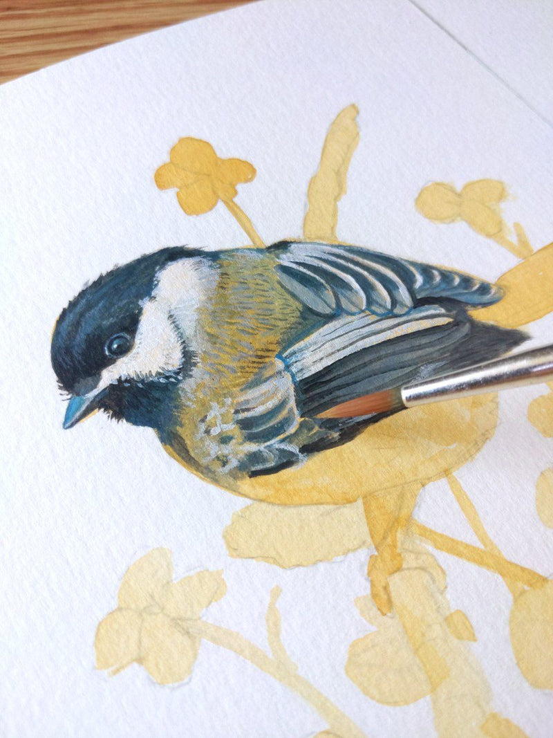 Birdwatching Through Paint: Illustrate Realistic Birds With Acrylic Kaitlin Hoyt