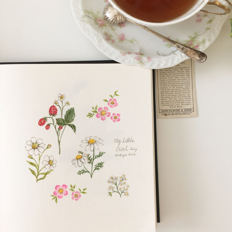 [Hidden🤫] How to Draw Flowers, Teasets and Food: Colored Pencil Drawing Class Illustration 빈티지걸