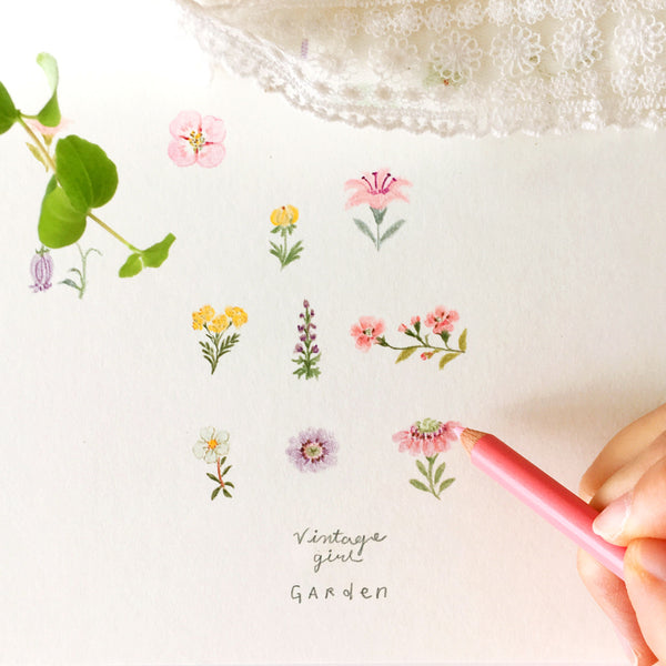 How to Draw Flowers, Teasets and Food: Colored Pencil Drawing Class Illustration 빈티지걸