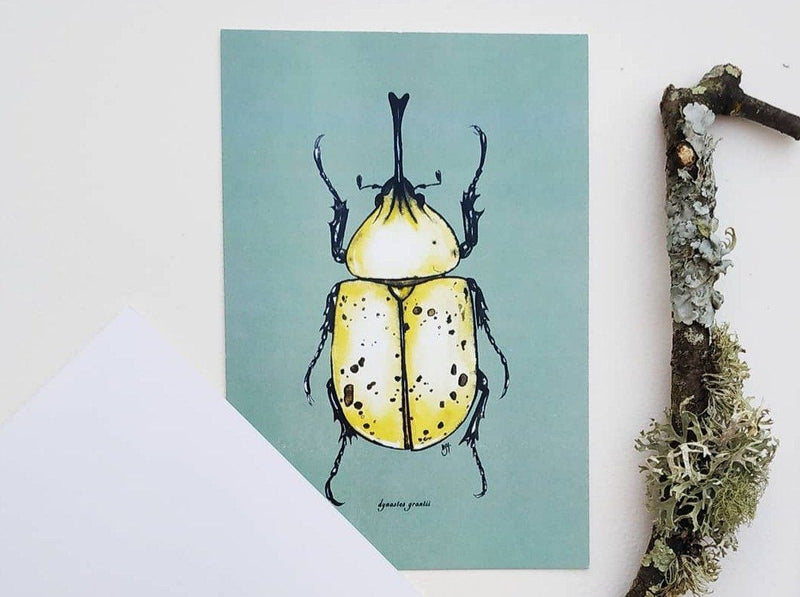 Illustrate Colorful Insects with Watercolor Illustration Nussaywatercolor