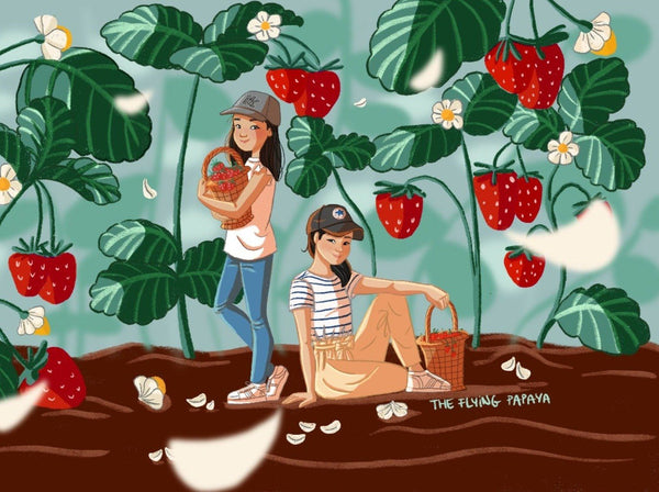 Indoor and Outdoor Illustrations with an iPad: Digital Drawing with Procreate Digital Art Lis