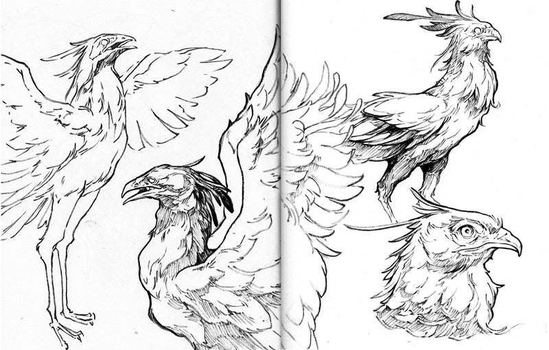 Sketching Animals and Creatures with Pen and Ink Illustration Sorie Kim