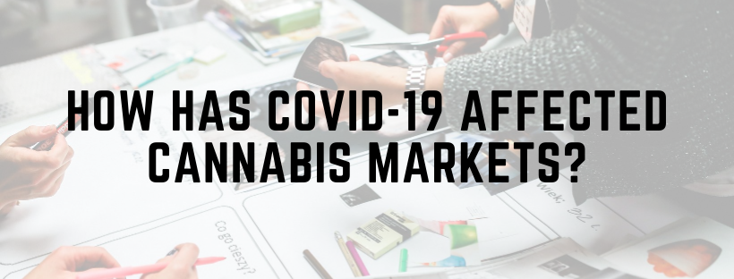 How has COVID-19 Affected Cannabis Markets?