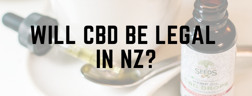 When Will CBD be Legal in NZ?