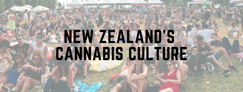 new zealand's cannabis culture