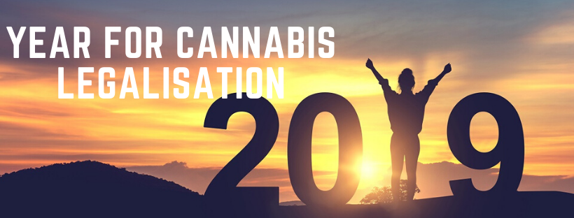 why 2019 is the year for cannabis legalisation