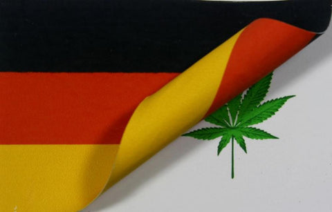 The German government's approach to drug use policies h