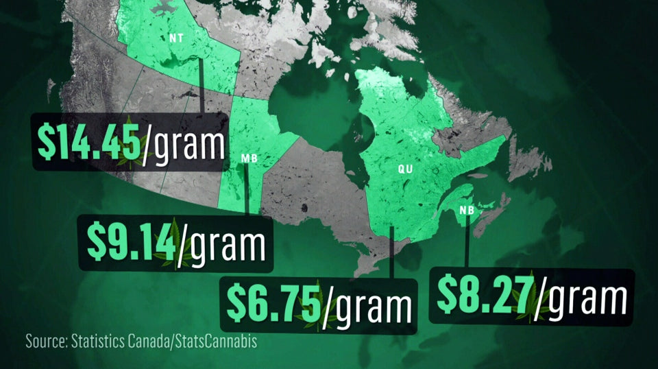 Rising cost of marijuana post-legalisation