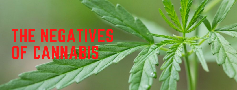 negatives of cannabis