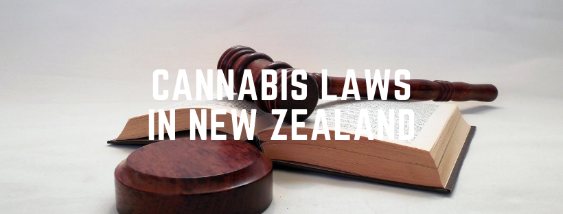 cannabis laws in new zealand
