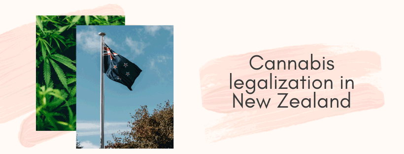cannabis legalization in new zealand