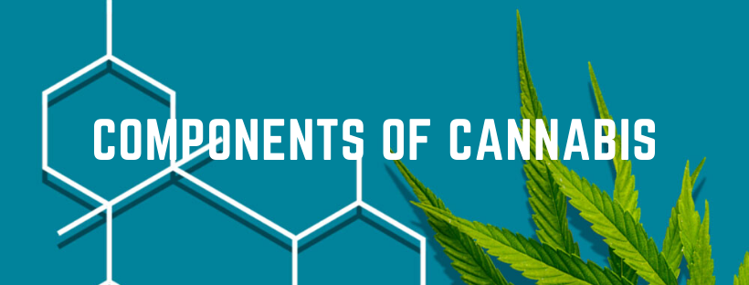 components of cannabis