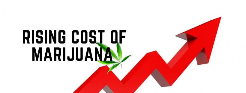 Rising cost of marijuana