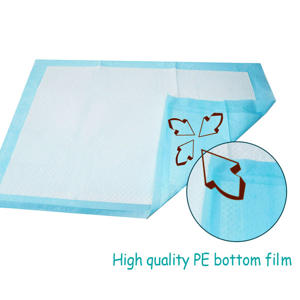 RWorld Super Pee Pads For Potty Training