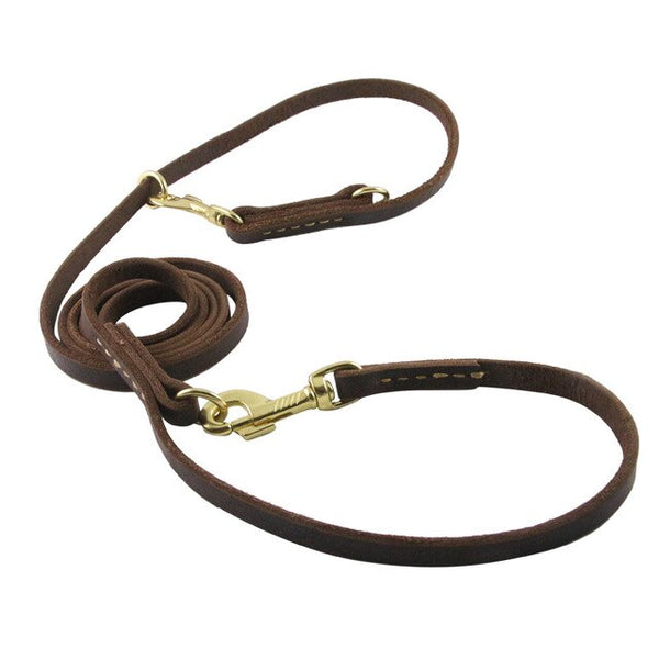 RWorld Multifunctional Leash