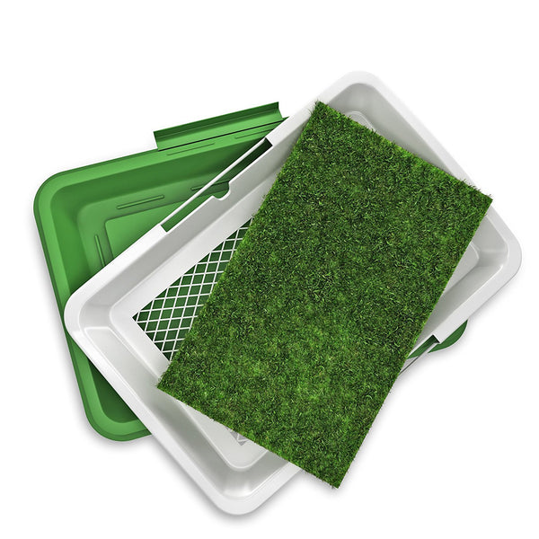 Grass Mat for Toilet Training