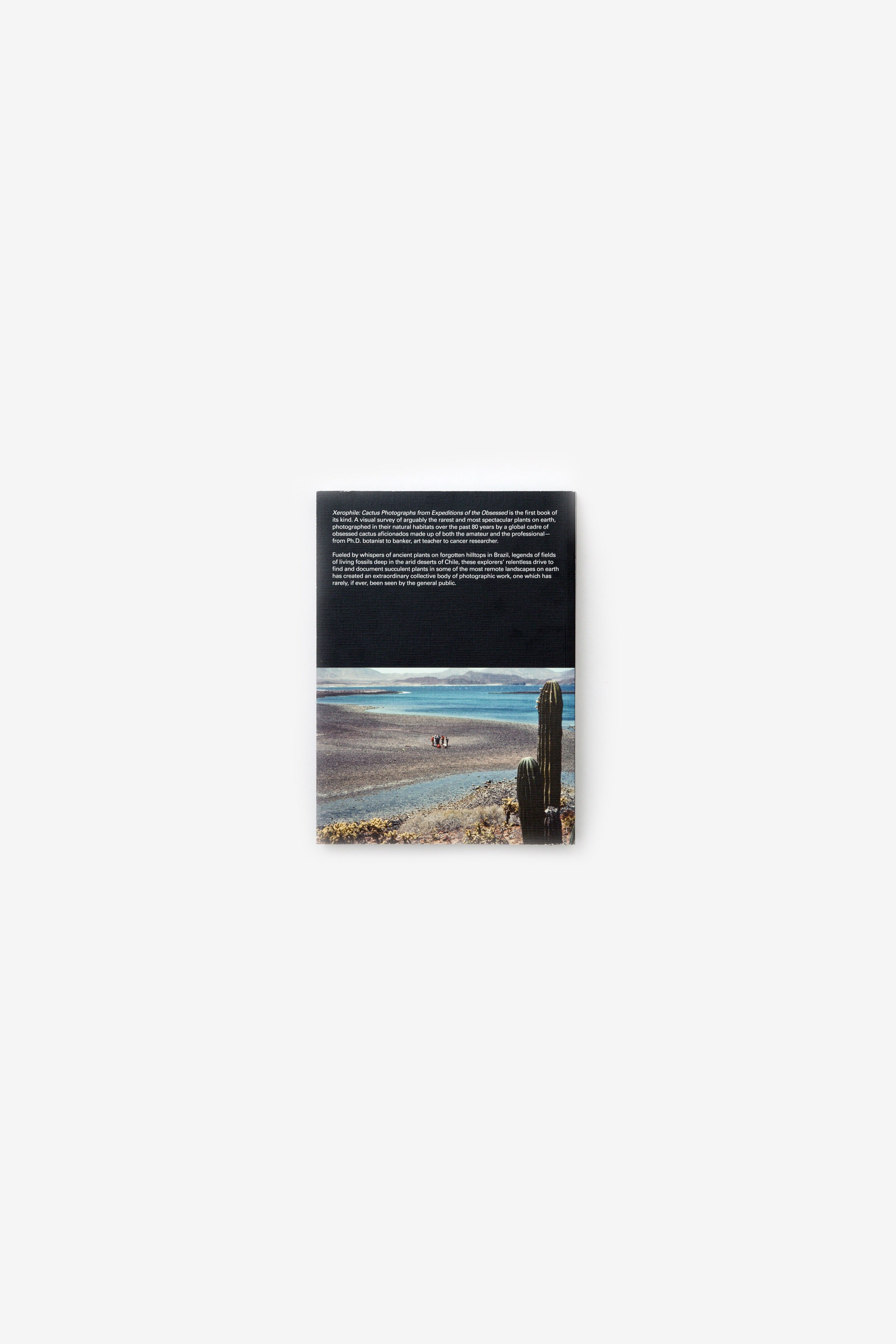 ec5a5d8778ed Xerophile  Cactus Photographs from Expeditions of the Obsessed – HOKO