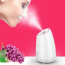 Load image into Gallery viewer, Maoer-Fruit™ Nano Ionic Facial Steamer