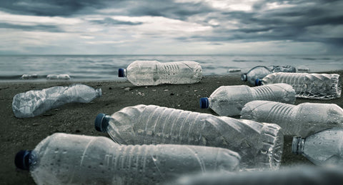 plastic water bottles are bad