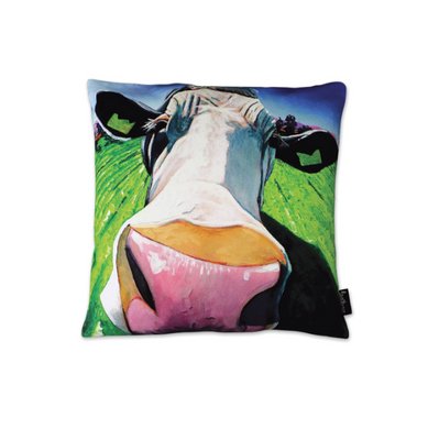 Tipperary - Eoin O Connor The Moover And Shaker Cushion