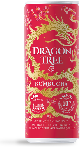 Dragon Tree Kombucha 24 Pack