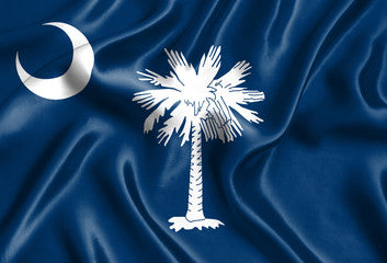 South Carolina Registered Agent Service