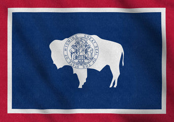 Wyoming Registered Agent Service