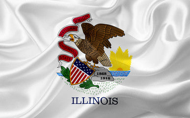 Illinois Registered Agent Service